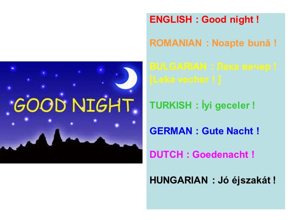 ENGLISH : Good night ! ROMANIAN : Noapte bună ! BULGARIAN : Лека вечер ! [Leka vecher ! ] TURKISH : İyi geceler !